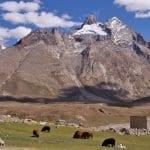 Zanskar Trek - Ladakh